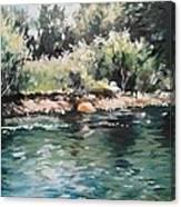 Logan River Canvas Print