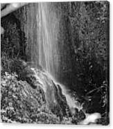 Loja Waterfall Mono Canvas Print