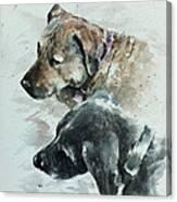 Loki And Pandora Canvas Print