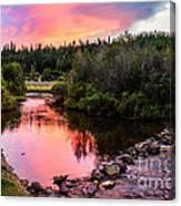 Lolo Hot Springs Creek Canvas Print
