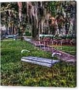 Lone Bench Canvas Print