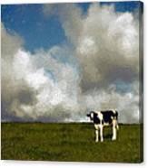Lone Cow Canvas Print