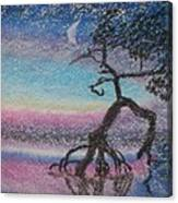 Lone Dancer By Moonlight  Canvas Print