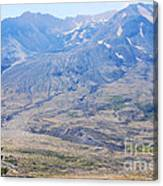 Lone Evergreen - Mount St. Helens 2012 Canvas Print