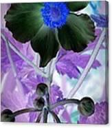 Lone Flower 1 Canvas Print