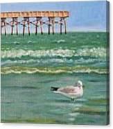 Lone Gull A-piers Canvas Print