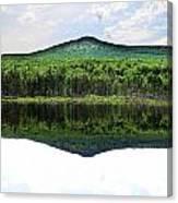 Lone Lake Canvas Print