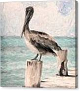 Lone Pelican Canvas Print