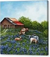 Lone Star Bluebonnets Canvas Print