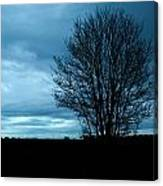 Lone Tree At Dusk Canvas Print