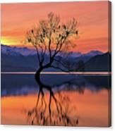 Lone Tree Is Not Lonely Canvas Print