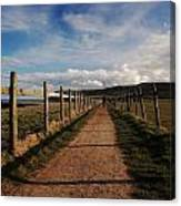 Lone Walker On The North Yorkshire Coastal Path Canvas Print