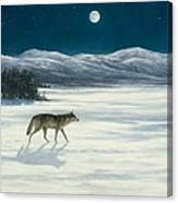 Lone Wolf In Winter   Version 2 Canvas Print