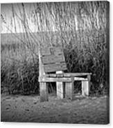Lonely Beach Bench Canvas Print