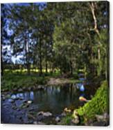 Lonely Creek Canvas Print