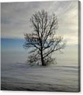Lonely Prairie Canvas Print