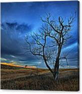 Lonely Sentinel Canvas Print