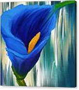 Lonesome And Blue- Blue Calla Lily Paintings Canvas Print