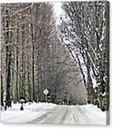 Long Country Road Canvas Print