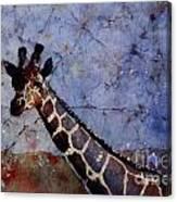 Long-neck Bottled Canvas Print