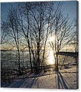 Long Shadows In The Snow Canvas Print