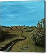 Long Trail Canvas Print