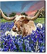 Longhorn In Bluebonnets Canvas Print