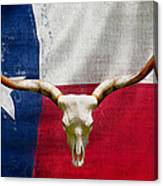 Longhorn Of Texas 2 Canvas Print