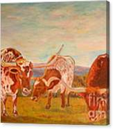 Longhorns On The Plateau Canvas Print