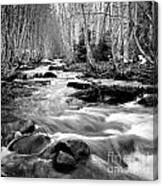 Longmire Stream 5bw Canvas Print