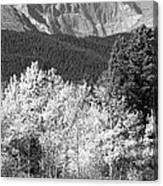 Longs Peak Autumn Scenic Bw View Canvas Print