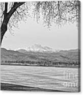 Longs Peak Winter View In Black And White Canvas Print