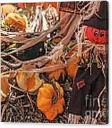 Look Of Fall Canvas Print