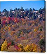Looking At The Top Of Bald Mountain Canvas Print