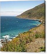 Looking Back At Pch Canvas Print
