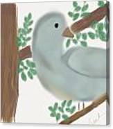 Looking Bird Canvas Print