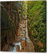 Looking Down Flume Gorge Canvas Print
