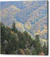 Looking Down On Autumn From The Top Of Smoky Mountains Canvas Print