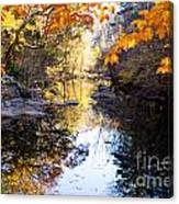 Looking Down The Eno River Canvas Print