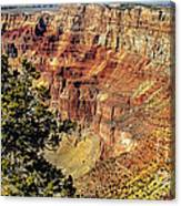 Looking Into The South Rim Canvas Print
