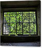 Looking Through Old Basement Window On To Vibrant Green Foliage Fine Art Photography Print  Canvas Print