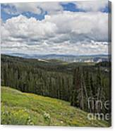 Looking To The Canyon - Yellowstone Canvas Print