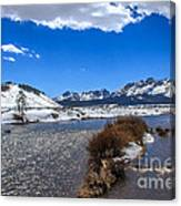 Looking Up The Salmon River Canvas Print