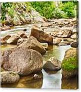 Looking Upstream The Colorado St Vrain River Canvas Print