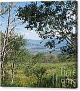 Lookout From Guardsman's Pass Canvas Print