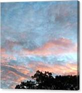 Looks Like And Oil Painted Sky Canvas Print