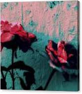 Looks Like Painted Roses Abstract Canvas Print