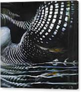Loon Reflections Canvas Print