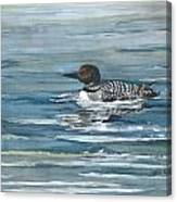 Looney Loon Canvas Print