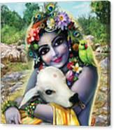 Lord Krishna On The Govardhan Canvas Print